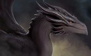 Картинка дракон, монстр, существо, рога