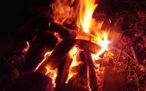 Картинка ночь, тепло, Костер