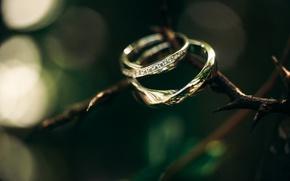 Картинка камни, кольца, помолвка