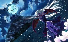 Картинка ночь, замок, кровь, летучие мыши, полнолуние, красные глаза, голод, клинок, вампирша, черные крылья, Tamamayu Miserareta …