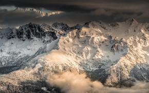 Картинка зима, лес, облака, снег, деревья, горы, скалы, Франция, высота, долина, Альпы, панорама, вид сверху, Sarcenas