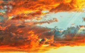 Обои небо, облака, закат, by exobiology