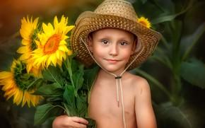 Картинка лето, подсолнухи, шляпа, мальчик