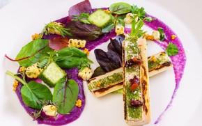 Картинка зелень, еда, овощи, соус, салат, закуска