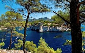Картинка море, деревья, скалы, побережье, Франция, бухта, Provence, Calanque, Port Miou