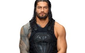 Картинка взгляд, тату, татуировка, muscle, мышцы, рестлер, tattoo, WWE, атлет, Roman Reigns, Ро́ман Ре́йнс