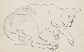 Картинка бумага, графика, карандаш, Tsuguharu Foujita, Спящая кошка