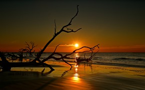 Картинка море, небо, пейзаж, закат, красота, бревна