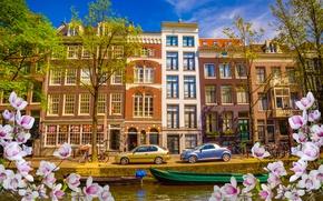 Картинка река, весна, лодки, Амстердам, цветение, blossom, Amsterdam, flowers, old, spring, buildings, Netherlands, canal