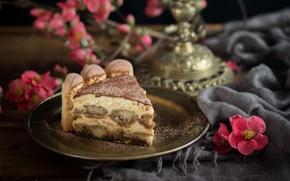 Картинка цветы, торт, тирамису