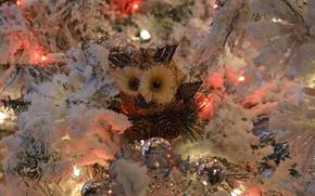 Картинка праздник, сова, игрушка, елка, новый год