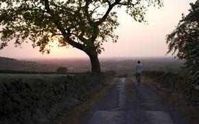 Картинка мужчина, вечер, дорога, туман