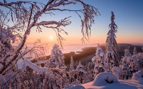 Картинка красота, зима, снег, природа, Финляндия, пейзаж