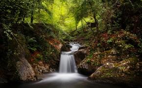 Картинка лес, ручей, водопад, Испания, Spain, Наварра, Navarre, Goizueta, Гойсуэта, Artikutza