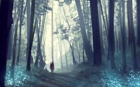 Картинка лес, девушка, природа, smile