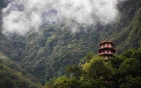 Картинка горы, туман, леса, Taiwan, Taroko Gorge, зелет