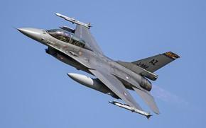 Картинка Fighting Falcon, General Dynamics, F-16BM