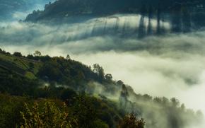 Картинка горы, туман, Украина, Закарпатье