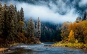 Картинка осень, горы, туман, река