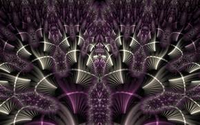 Обои фиолетовый, фрактал, узор, цвет