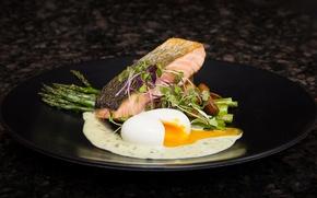 Картинка яйцо, салат, лосось, спаржа