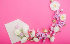 Картинка цветы, лепестки, розовые, white, белые, pink, flowers, композиция, petals, floral