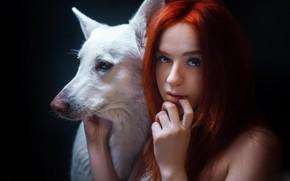 Картинка взгляд, морда, лицо, рука, портрет, собака, рыжая, рыжеволосая, чёрный фон, Alexander Drobkov-Light, Мария Некрасова