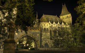 Картинка Ночь, Улица, Night, Street, Венгрия, Hungary, Будапешт, Budapest, Vajdahunyad Castle, Замок Вайдахуняд