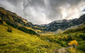 Обои облака, осень, скалы, небо, ущелье, тропа, Hilterfingen, деревья, горы, тучи, Швейцария, камни