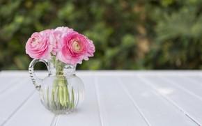 Картинка цветы, букет, ваза, розовые, пионы