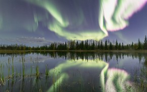 Картинка лес, отражение, река, северное сияние, Канада, Canada, Northwest Territories, Северо-Западные территории, Hay River, Река Хей