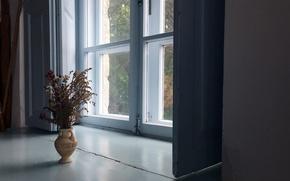Картинка цветы, дом, окно