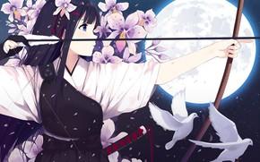 Картинка девушка, цветы, луна, аниме, лук