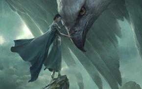 Обои Legend of Ravaging Dynasties, L.O.R.D., женщина, скалы, небо, фэнтези, девушка, рисунок, прощание, меланхолия, арт, гигантский ...