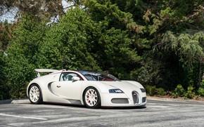 Картинка Bugatti, veyron, white, parking