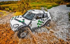Картинка Вода, Mini, Трава, Спорт, Скорость, Гонка, Rally, Ралли, Передок, Брод, Raid, MINI Cooper, X-Raid