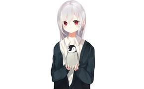 Картинка девочка, белый фон, пингвинёнок