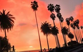 Картинка лето, город, тропики, пальмы, рассвет
