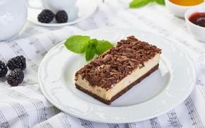 Картинка шоколад, торт, мята, ежевика