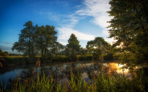 Картинка небо, трава, деревья, река