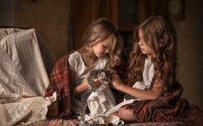Картинка любовь, котенок, волосы, дружба, девочка, подружки