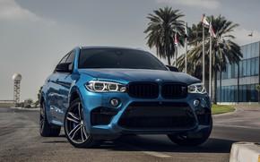 Картинка BMW, Light, Sky, Blue, X6M, UAE, LED, F86