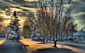 Обои елка, беседка, снег, тень, зима, солнце, деревья