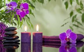 Картинка цветы, свечи, орхидеи, спа камни