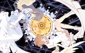 Картинка девочки, крылья, ангел, аниме, двое, Card Captor Sakura, Сакура - собирательница карт