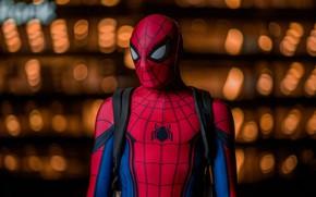 Обои фон, костюм, человек паук