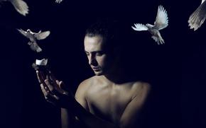 Картинка фон, человек, голуби