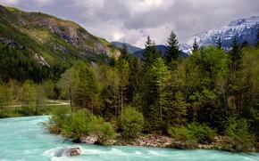 Картинка лес, деревья, горы, река, камни, течение, Словения, Bovec