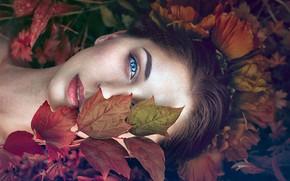 Картинка взгляд, листья, девушка, лицо, настроение, Monica Lazar