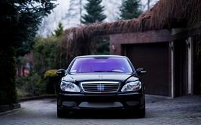 Картинка Mercedes, Classic, Front, Black, Legend, S500, W220